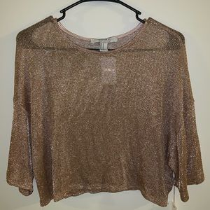 Sparkly mesh crop top